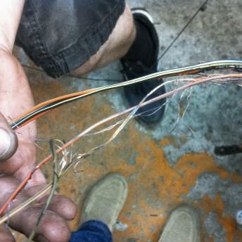 Демонтированный кусок жгута проводки Додж Калибр